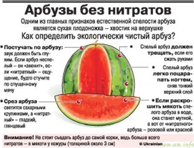 http://am-am.info/wp-content/uploads/2012/08/arbuz-nitraty.jpg