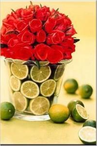 fruit-01.jpg