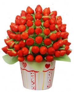 fruit-07.jpg