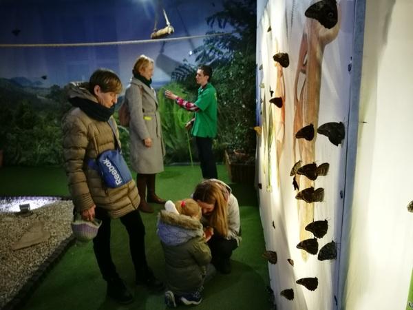 В Музее бабочек в Кракове