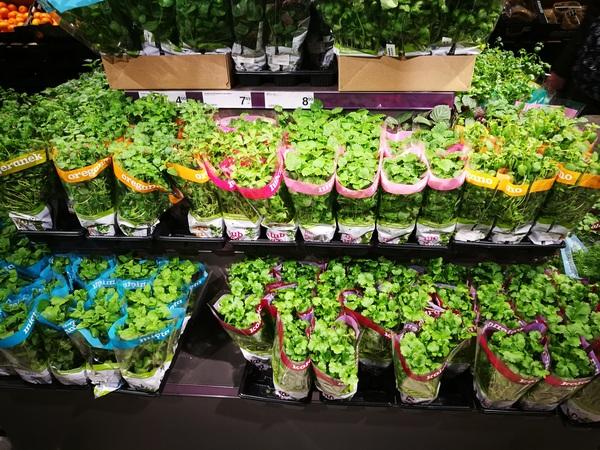 Зелень в горшочках в краковском супермаркете